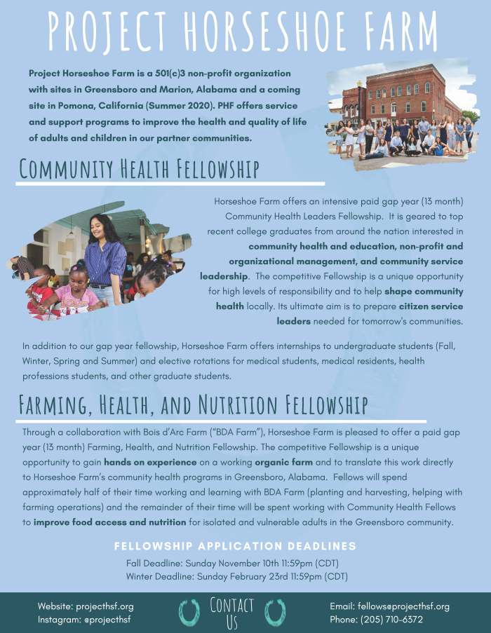 Project HSF Fellowship Flyer